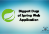 Biggest Bugs of Spring Web Application