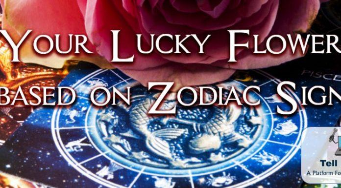 Lucky flower: Your Zodiac Sign