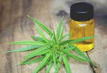 The Ultimate Beginners Guide to CBD Oil