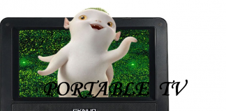 Best Portable TV