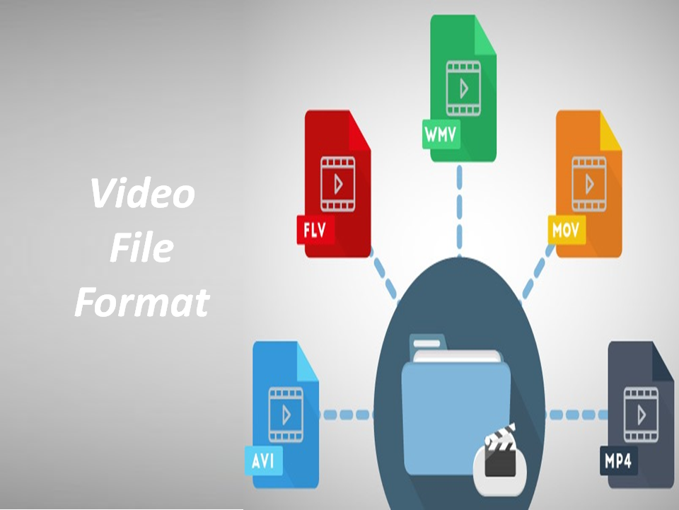 Understand the differences between video file formats